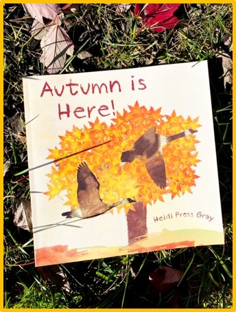 "The cover of the book ""Autumn is Here"" is shown. The cover has an orange tree and 2 geese flying on it. The book is laying in the grass and is surrounded by leaves."