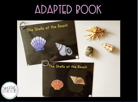 """The image shows the cover of 2 adapted books, both with the title """"The Shells at the Beach."""" The top book shows clipart images, while the second book shows real images of shells."""